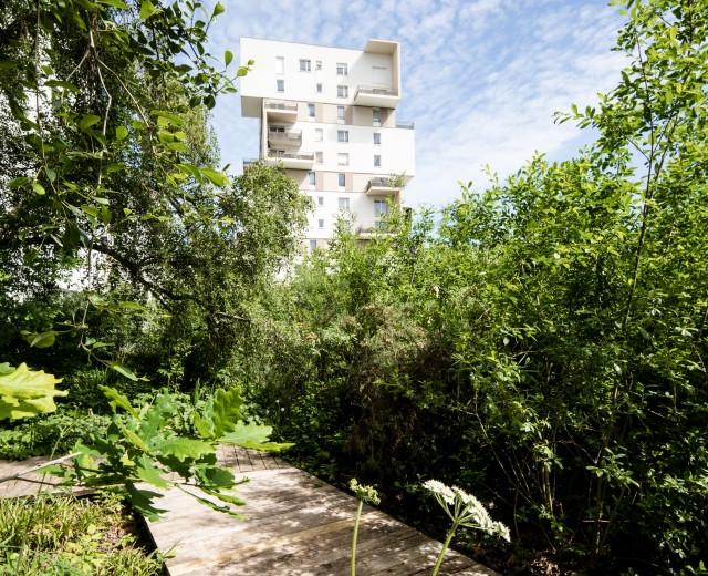 Dossier Parc en ville : Faire coexister la ville avec la nature